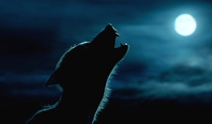 Leçon de BonGo # 4 : Halloween et loups-garous