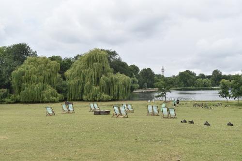 Pour les amants de la nature et des oiseaux, Regent's Park, c'est le paradis!