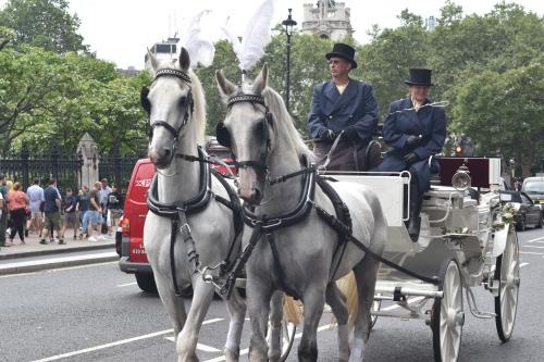 Les calèches se font plutôt rares à Londres. Celle-ci faisait sans doute partie de la collection royale.
