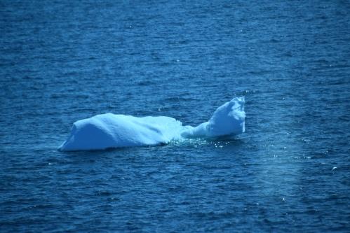 Cet iceberg prenant la pause d'un ours polaire couché sur le dos